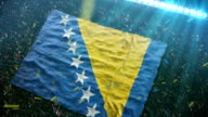 Flag of Bosnia at the stadium video