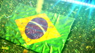 Flag of Brazil at the stadium video
