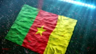 Flag of Cameroon at the stadium video