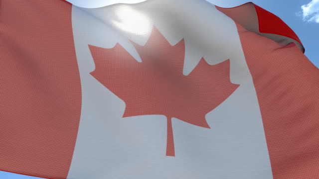 Flag of Canada. Seamlees loop. video
