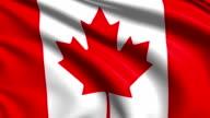 flag of Canada (loop) video