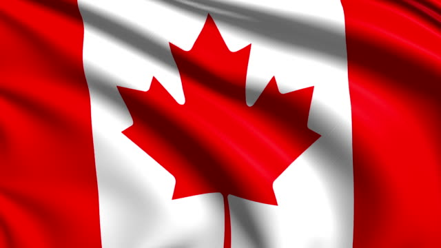 flag of Canada (loop) video