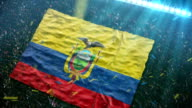 Flag of Ecuador at the stadium video