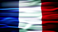 Flag of France. French official flag gently waving in the wind video