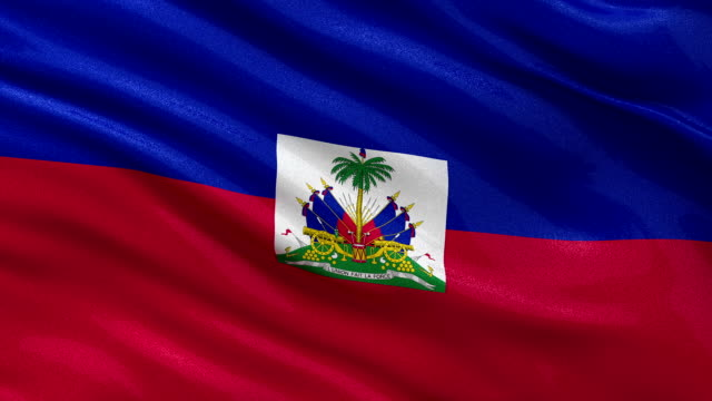 Flag of Haiti - seamless loop video