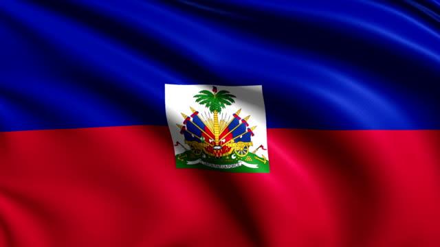 flag of Haiti (loop) video