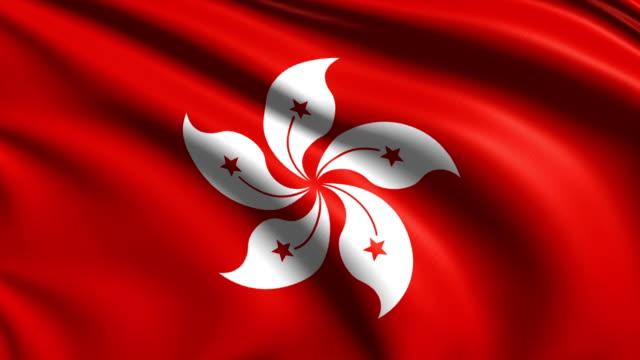 flag of Hong Kong (loop) video