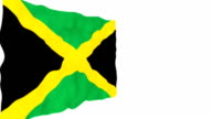 Flag of Jamaica. video