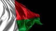 Flag of Madagascar video