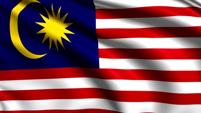 flag of Malaysia (loop) video