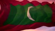 Flag of Maldives video