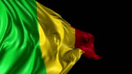 Flag of Mali video