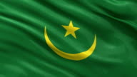 Flag of Mauritania - seamless loop video