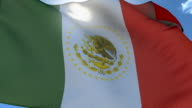 Flag of Mexico Waving, Seamless Loop video