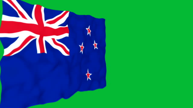 Flag of New Zealand. video