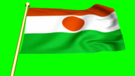 Flag of Niger  Animation video