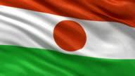 Flag of Niger seamless loop video