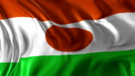 Flag of Niger video