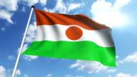 flag of Niger (loop) video