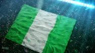 Flag of Nigeria at the stadium video