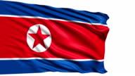 flag of North Korea (loop) video
