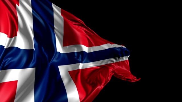 Flag of Norway video