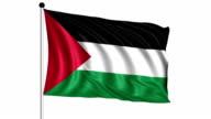 flag of Palestine - loop (+ alpha channel) video