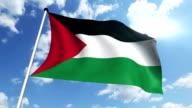 flag of Palestine (loop) video