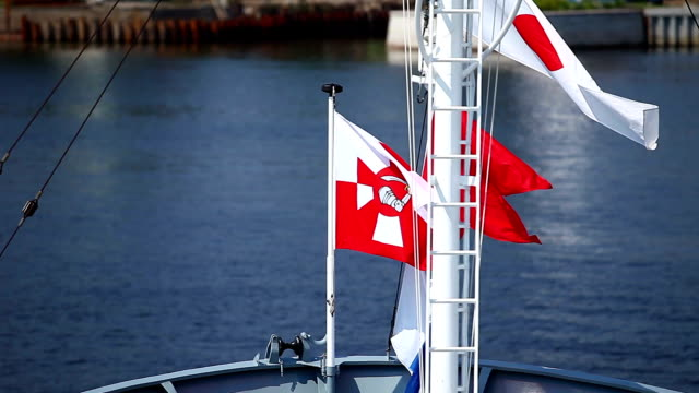 Flag of Poland Navy video