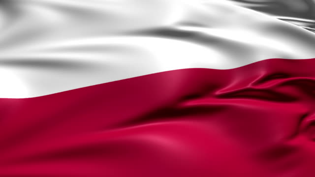 flag of Poland (loop) video