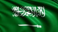 flag of Saudi Arabia (loop) video