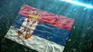 Flag of Serbia at the stadium video