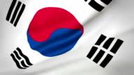 Flag of South Korea Loopable video