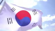 Flag of South Korean video