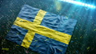 Flag of Sweden at the stadium video