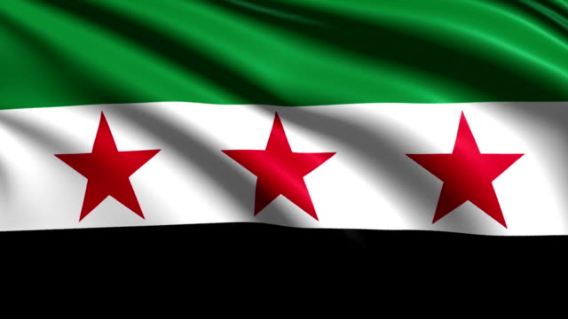 flag of Syria - Syrian National Coalition (loop) video