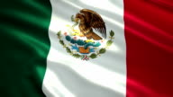 Flag of the Mexico. video