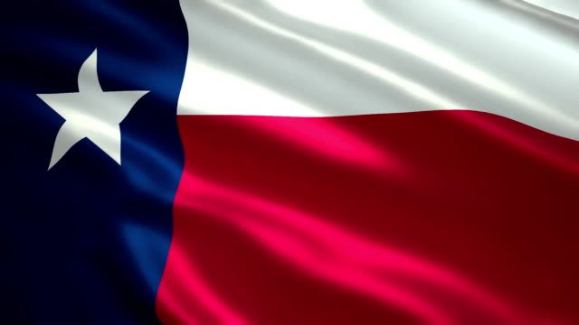 Flag of the Texas video