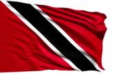 flag of Trinidad and Tobago (loop) video