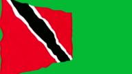 Flag of Trinidad. video