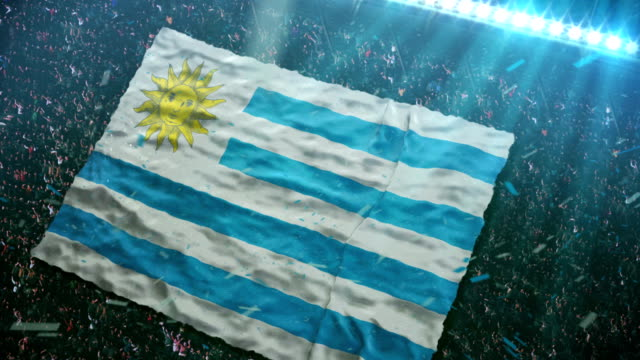 Flag of  Uruguay at the stadium video