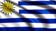 flag of Uruguay  (loop) video