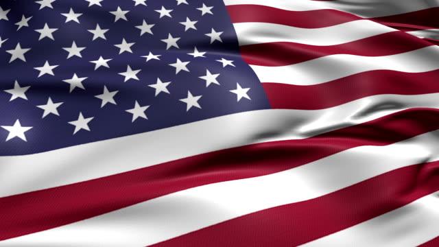 flag of USA (loop) video