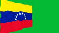 Flag of Venezuela. video