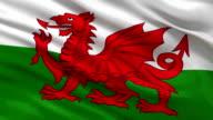 Flag of Wales seamless loop video