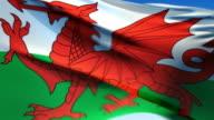 Flag of Wales (HD 1080i60) video