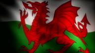 Flag of Wales video