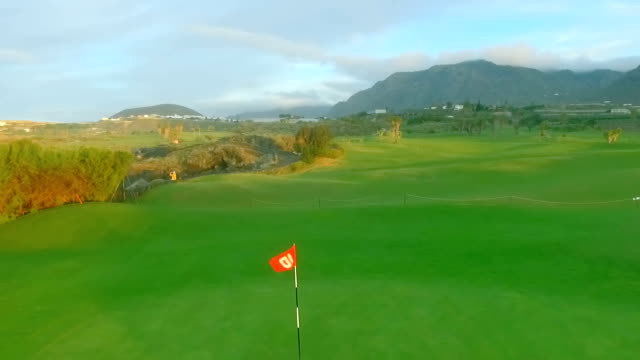 Flag on the golf course video