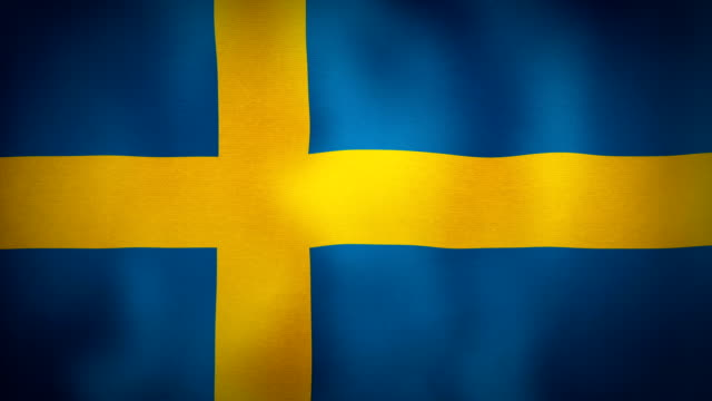 Flag Sweden video