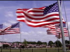 Flags blowing on Memorial Day video